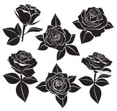 Vector set of Rose buds, stems and leaves with white contour line and silhouettes in black color. Vector illustration for design a. Nd tattoo on white background Royalty Free Stock Photography