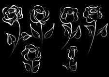 Vector set of roses. Royalty Free Stock Photo