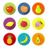 Vector set round icons with fruit Royalty Free Stock Photo