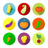 Vector set round icons with vegetables Royalty Free Stock Photography