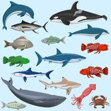Vector set of sea animals. Big vector set of sea animals isolated Stock Image