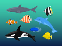 Vector set of sea creatures. Cute animals whale, fish, dolphin, shark. Vector illustration Stock Photos