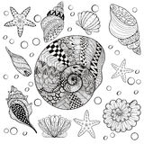 Vector set Sea Shells, zentangle shelsl for adult anti stress Co Royalty Free Stock Images