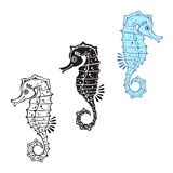 Vector set of seahorse on a white background. Sea Horses. Vector cartoon illustration, elements for design Royalty Free Stock Photography