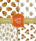 Vector set of seamless autumn patterns. Royalty Free Stock Images