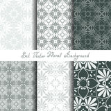 Vector set seamless floral ornament Stock Image