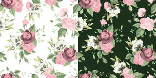 Vector set of seamless floral patterns with roses Stock Photography