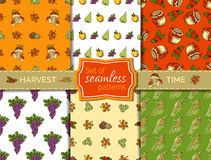 Vector set of seamless harvest patterns. Stock Photos