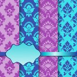 Vector set of seamless with lace pattern. Stock Images
