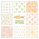 Vector set of seamless linear autumn patterns. Royalty Free Stock Photography