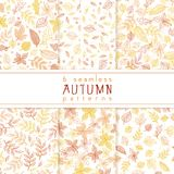 Vector set of seamless pattern from doodle hand drawn autumn leaves Royalty Free Stock Image