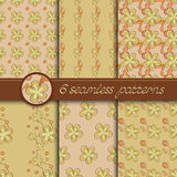 Vector set of seamless patterns with floral elements Royalty Free Stock Photo