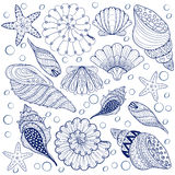 Vector set Shells, zentangle blue seashells for adult anti stres Royalty Free Stock Image
