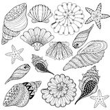 Vector set Shells, zentangle seashells for adult anti stress Col Stock Photo