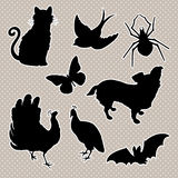 Vector set silhouettes cat, bird, spider butterfly, dog peacock, bat. Royalty Free Stock Photography