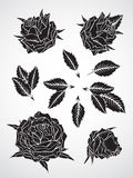 Vector set of silhouettes flowers and leaves. Stock Photography