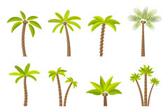 Vector set of simple palm trees. Flat cartoon palms on white background royalty free illustration