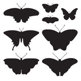 Vector set with six  butterflies Royalty Free Stock Image