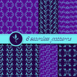 Vector set of six seamless patterns with hand drawn floral element Stock Photography