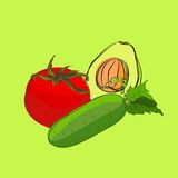 Vector set of sketch vegetables Royalty Free Stock Photo