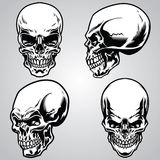 Set of skull. Vector set of skull, suitable for any skull theme project Stock Photo