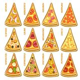 Vector set slices of italian Pizza Royalty Free Stock Photography