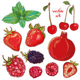 Vector set with small fruits, berries Royalty Free Stock Photos