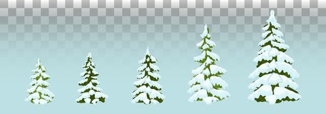 Firs in the snow. set of Christmas trees with snow. Isolated. F stock illustration