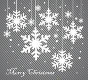 Vector set of snowflakes background Stock Photo