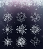 Vector set of snowflakes Stock Photography