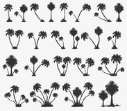 Vector set of solar palm beach Stock Photos