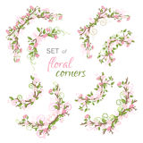 Vector set of spring floral corners. royalty free illustration