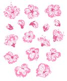 Vector set of spring flowers. Hand-drawn ornate flowers isolated on a white background Royalty Free Stock Photography