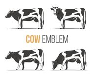 Vector set of a stylish spotted holstein cows. Royalty Free Stock Images