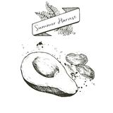Vector set of summer harvest. Decorated with banner, fern leaves and blots. Avocado and dates. Royalty Free Stock Photos
