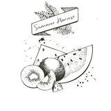 Vector set of summer harvest. Decorated with banner, fern leaves and blots. Watermelone slices and kiwi fruit. Royalty Free Stock Image