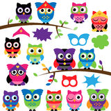 Vector Set of Superhero Owls with Branches and Speech Bubbles Royalty Free Stock Photography
