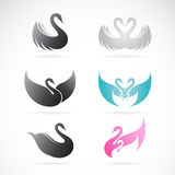 Vector set of swan design Stock Photos