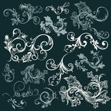 Vector set of swirl vintage ornaments for design Stock Photography