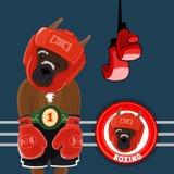 Vector Set Symbols Boxing Stock Photos