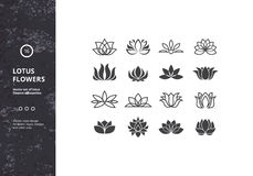 Vector Set of Template Water Lily Shapes. Lotus Flower Icons. Vector Set of Template Water Lily Shapes. Hipster Designs for Labels, Badges and Logos Royalty Free Stock Photography