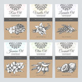 Vector set of templates packaging cosmetic Stock Images