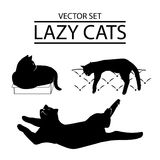Vector set of three cat icons vector illustration