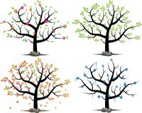 Vector set of a tree in 4 seasons royalty free stock image