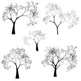Vector Set of Tree Silhouettes Royalty Free Stock Image