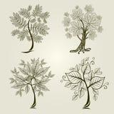 Vector set of trees Stock Photo