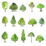 Vector set of trees drawing by watercolor royalty free illustration
