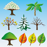 Vector set. Trees. Stock Images