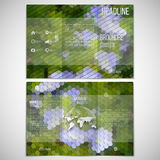 Vector set of tri-fold brochure design template on. Both sides with world globe element. Blue flowers in the grass. Collection of abstract multicolored Royalty Free Stock Photo