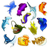 Vector set of tropical fishes on white background Stock Photos